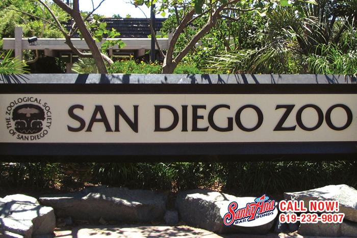 San-Diego-Bail-Bonds2